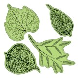 Fossil Leaves - Stamping Gear 4x4 inch