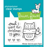 Winter Owl - Lawn Fawn Clear Stamp